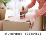 house moving concept. closeup... | Shutterstock . vector #533864611