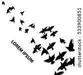 a flock of flying birds. vector   Shutterstock .eps vector #533900851