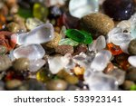 Macro Of A Colorful Group Of...