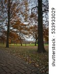 outdoor vertical image of trees ... | Shutterstock . vector #533933029