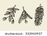 vector set with christmas...   Shutterstock .eps vector #533943937