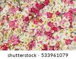 Stock photo colorful plum petals 533961079