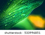 natural background water... | Shutterstock . vector #533996851