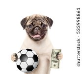 Funny Dog Holding Dollars And...
