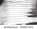 crocodile leather distress... | Shutterstock .eps vector #534027421