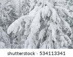 Winter Landscape Snow...