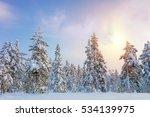 gentle winter sundown  ... | Shutterstock . vector #534139975