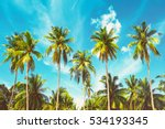 beautiful sunny beach. view of... | Shutterstock . vector #534193345