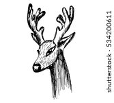 hand drawn sketch of a deer's... | Shutterstock .eps vector #534200611
