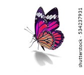 Stock photo beautiful pink monarch butterfly isolated on white background 534237931