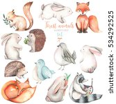 Stock photo collection set of watercolor cute forest animals illustrations hand drawn isolated on a white 534292525