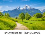 idyllic summer landscape with... | Shutterstock . vector #534303901