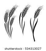 wheat vector ears collection on ... | Shutterstock .eps vector #534313027