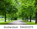 big trees with road in park.... | Shutterstock . vector #534322375