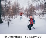 girls with snowshoes | Shutterstock . vector #534339499