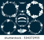 set of winter wreaths and... | Shutterstock .eps vector #534372955