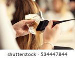 hairdresser coloring hair in... | Shutterstock . vector #534447844