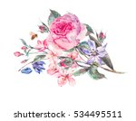 vintage garden watercolor... | Shutterstock . vector #534495511