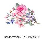 vintage garden watercolor... | Shutterstock . vector #534495511
