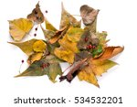 Pile Of Dried Leaves Isolated...