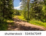 forest tourist routes in russia....   Shutterstock . vector #534567049