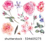 Stock photo spring set vintage watercolor bouquet of pink roses leaves blooming branches flowers bee and 534605275