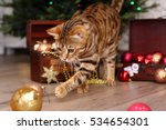 Bengal Cat On A Christmas Tree...