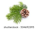 Fir Tree Branch And Cones...