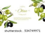 vector horizontal banner with... | Shutterstock .eps vector #534749971