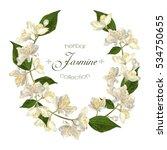 vector elegant jasmine flower... | Shutterstock .eps vector #534750655