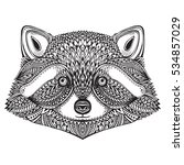 hand drawn raccoon face in... | Shutterstock .eps vector #534857029
