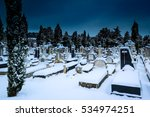 Snowing In The Cemetery St Jose....