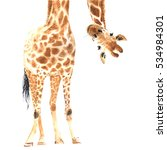 realistic giraffe made in... | Shutterstock . vector #534984301