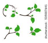 branch tree with aspen leaves...   Shutterstock .eps vector #535007641