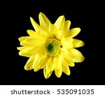 Yellow Daisy Flower On Black...