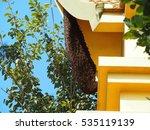 Amazing Natural Honeycomb...