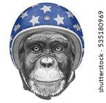 Portrait Of Monkey With Helmet...