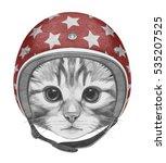 Portrait Of Kitty With Helmet....