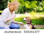 Stock photo young woman with beagle dog in the summer park obedient pet with his owner practicing paw command 535241377