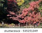 autumn in tokyo japan  | Shutterstock . vector #535251349