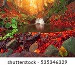 colorful autumn sunrise ... | Shutterstock . vector #535346329