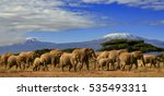 A View Of Kilimanjaro With A...