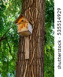 Small photo of A typical wooden birdhouse affixed to a tree trunk