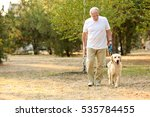 Stock photo senior man and big dog walking in park 535784455