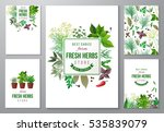5 bright backgrounds with fresh ...   Shutterstock .eps vector #535839079