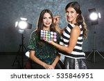 professional makeup artist... | Shutterstock . vector #535846951