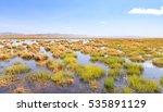 wetland | Shutterstock . vector #535891129