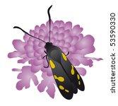 butterfly | Shutterstock .eps vector #53590330