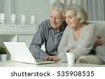 senior couple  with laptop | Shutterstock . vector #535908535