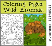 coloring pages  wild animals.... | Shutterstock .eps vector #535985395